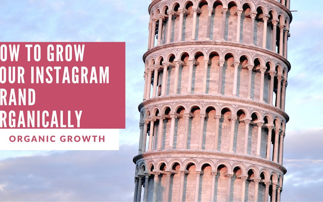 12 Organic Growth Factors for Instagram | How to Organically Grow on Instagram