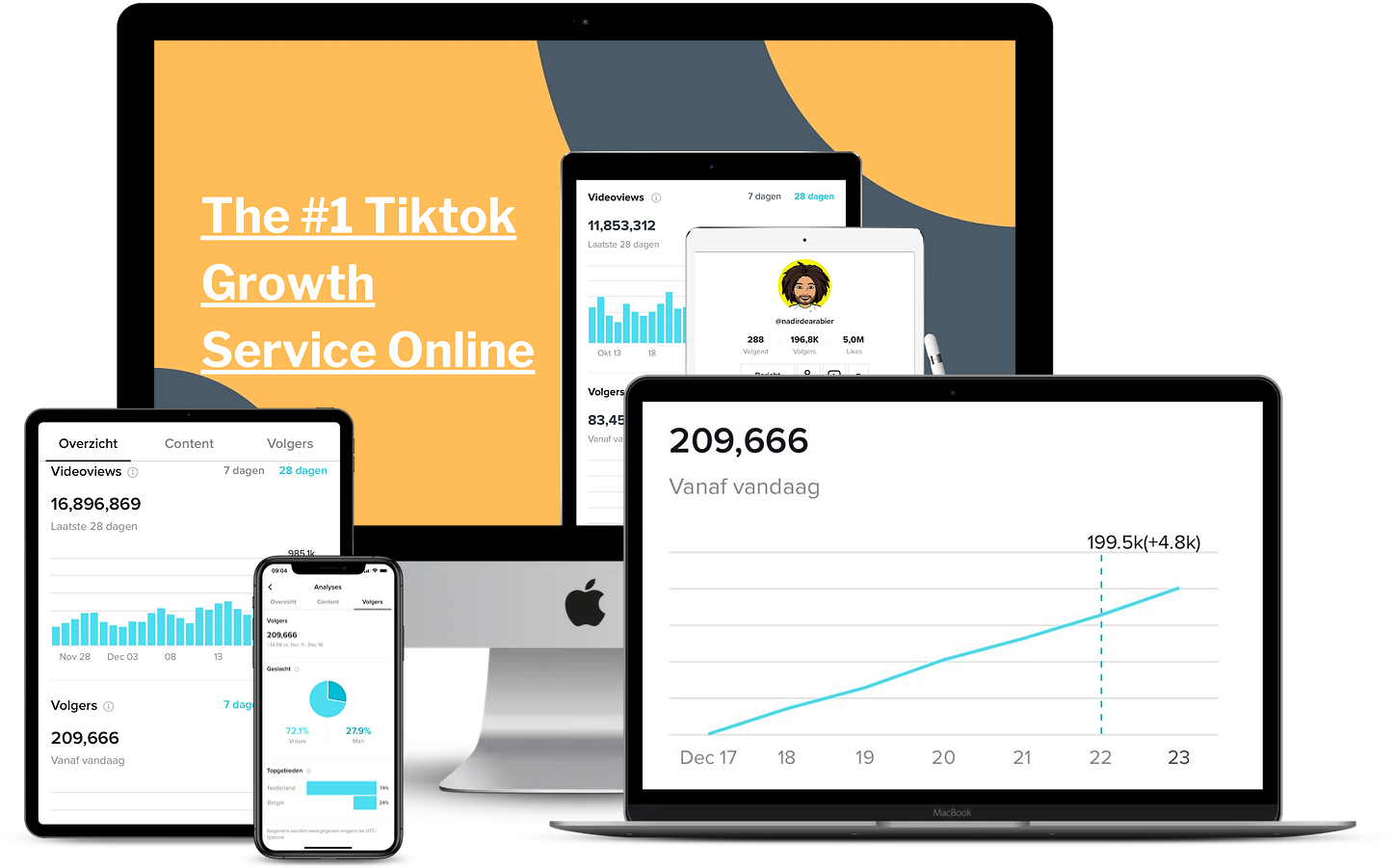 Tiktok Growth Service