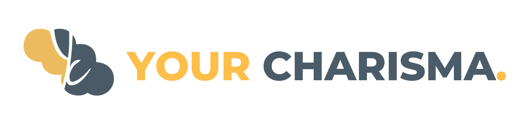 Your Charisma Banner