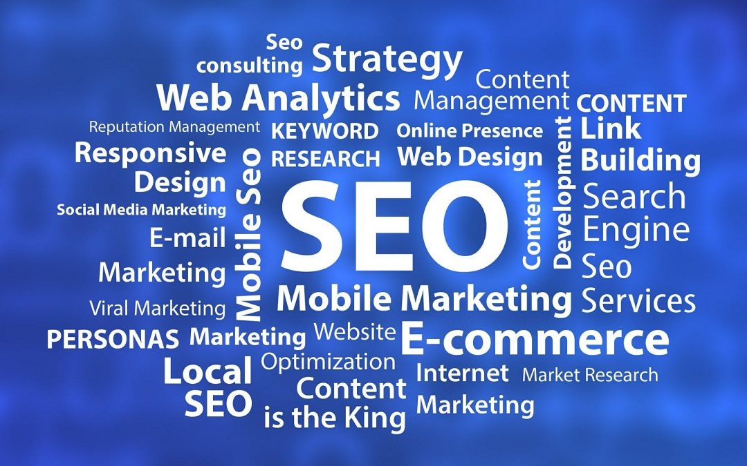 A promising SEO consultant will help you with offsite techniques